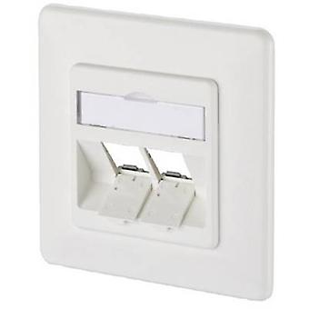 Network outlet Flush mount Insert with main panel and frame Unequipped