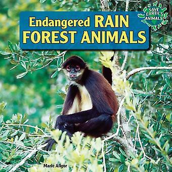 Utrotningshotad regnskog djur