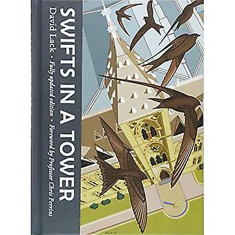 Swifts in a Tower