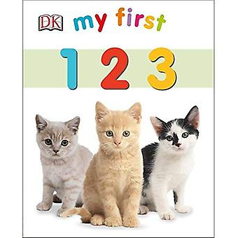 My First 123 (My 1st Board Books)