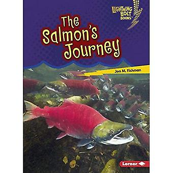 The Salmon's Journey (Lightning Bolt Books Amazing Migrators)