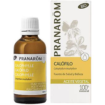 Pranarom Calophile Vegetable Oil