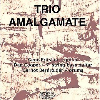 Pritsker/Cooper/Bernroider - Trio Amalgamate [CD] USA import
