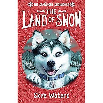 Starlight Snowdogs - das Land des Schnees