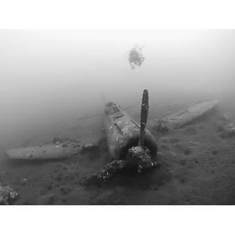 Diver explores the wreck of a Mitsubishi Zero fighter plane Kimbe Bay Papua New Guinea Poster Print