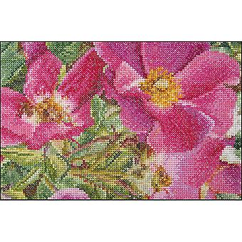 Rosa Moyessi On Aida Counted Cross Stitch Kit-6.75