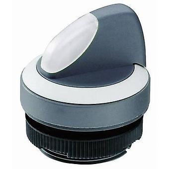Selector Black 1 x 90 ° RAFI RAFIX 22 FS+ 1.30.272.102/2200 1 pc(s)
