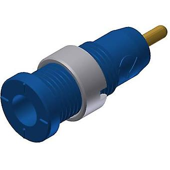 Safety jack socket Socket, vertical vertical Pin diameter: 2 mm Blue