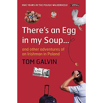 There's an Egg in My Soup - and Other Adventures of an Irishman in Pol