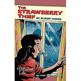 The Strawberry Thief: Level 4 (Travellers)