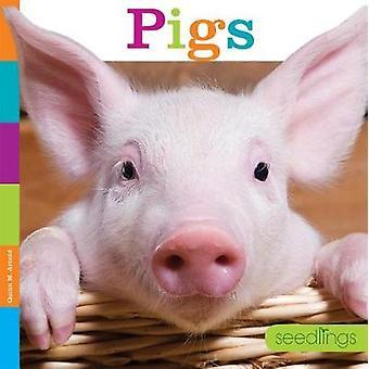 Seedlings - Pigs by Quinn M Arnold - 9781628323955 Book