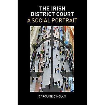 The Irish District Court: A Social Portrait