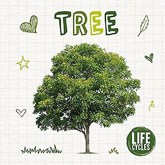 Life Cycle of a Tree by Kirsty Holmes - 9781786372864 Book