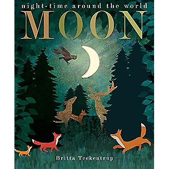 Moon by Patricia Hegarty - 9781848696679 Book