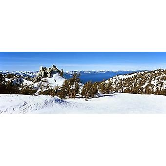 Trees on a snow covered landscape Heavenly Mountain Resort Lake Tahoe California-Nevada Border USA Poster Print