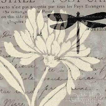 Bambosa Guadua III Poster Print von Patricia Pinto