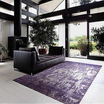 Silk Shadows Rugs Sha10 In Amethyst