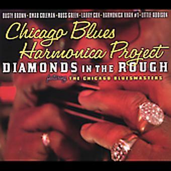 Chicago Blues harmonika projekt - diamanter i det barske [CD] USA importerer