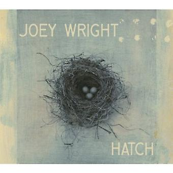 Joey Wright - lugen [CD] USA import