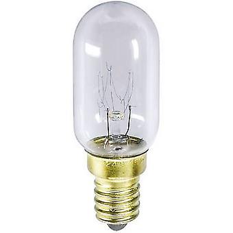 Barthelme 00918217 Filament Bulb 235 V 25 W