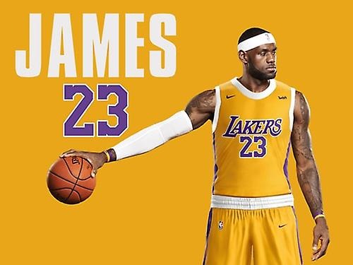 Lebron James La Lakers Poster Wall Art Print (24x18)