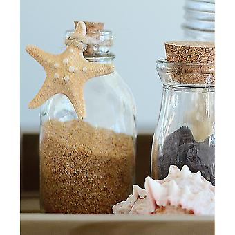 Gathered Star Fish-  GSTAR