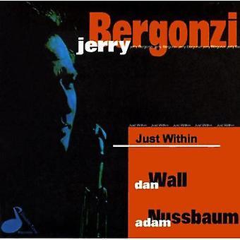 Jerry Bergonzi - lige inden for [CD] USA import