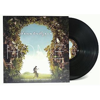 Dewa Budjana - importazione USA Home [Vinyl]