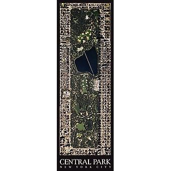Central Park New York City Poster Print by Aric Boyles (10 x 30)