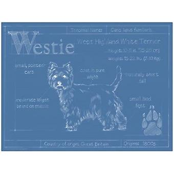 Blueprint Westie Poster Print by Ethan Harper (16 x 12)
