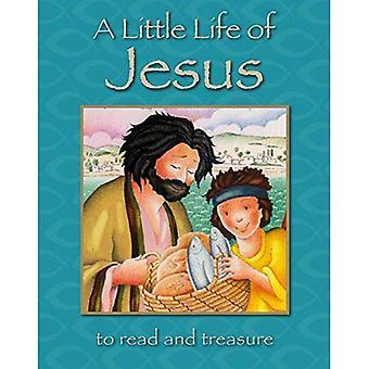 Un poco la vida de Jesús