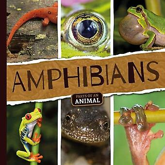 Amphibians (Parts of an Animal)