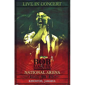 Bob Marley - Concert Poster Poster Print