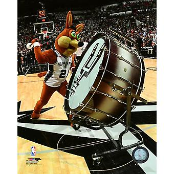San Antonio Spurs maskotka Coyote Photo Print