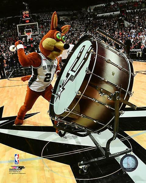 San Antonio Spurs Mascot The Coyote Photo Print
