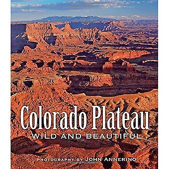 Colorado Plateau sauvage et magnifique