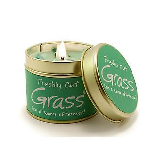 Lily Flame Scented Candle in a presentation Tin - Freshly Cut Grass