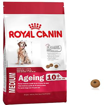 Royal Canin Medium Ageing 10+ (Dogs , Dog Food , Dry Food)