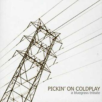 Pickin' on Coldplay - Pickin' on Coldplay [CD] USA import