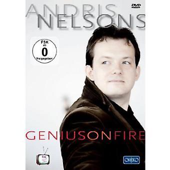 Geni på brand [DVD] USA importerer