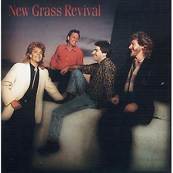 Nye Grass Revival - Hold for at en drøm [CD] USA import