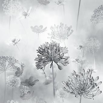 Flower Wallpaper Floral Spring Meadow Field Magical Dandelion GreyScale Arthouse