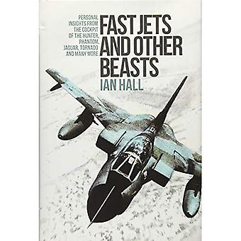 Fast Jets and Other Beasts: Personal Insights from the Cockpit of the Hunter, Phantom, Jaguar, Tornado and Many More