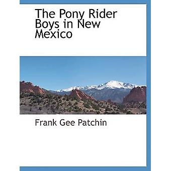 The Pony Rider Boys in New Mexico by Patchin & Frank Gee