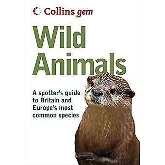 Animais selvagens (Collins GEM)