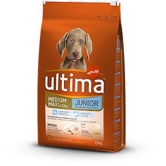 Ultima Medium Maxi Junior Rice and Chicken (Dogs , Dog Food , Dry Food)