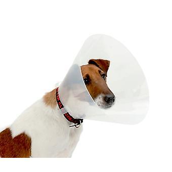 Buster Clic Collar Transparent 30cm 10pc