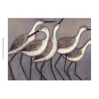 Shore Birds II Poster Print by Norman Wyatt (19 x 13)