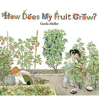 How Does My Fruit Grow? by Gerda Muller - 9781782504726 Book
