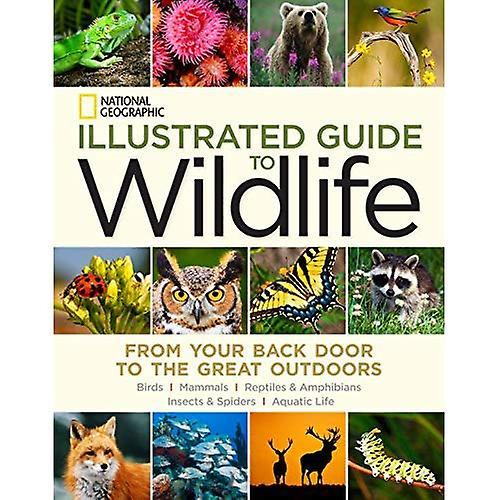 National Geographic Illustrated Guide to Wildlife  From Your Back Door to the Great de plein airs